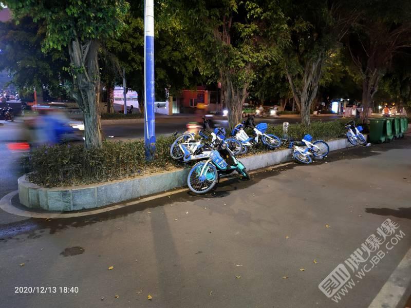 共享單車被隨意丟棄,這樣的行為是有意還是無意?