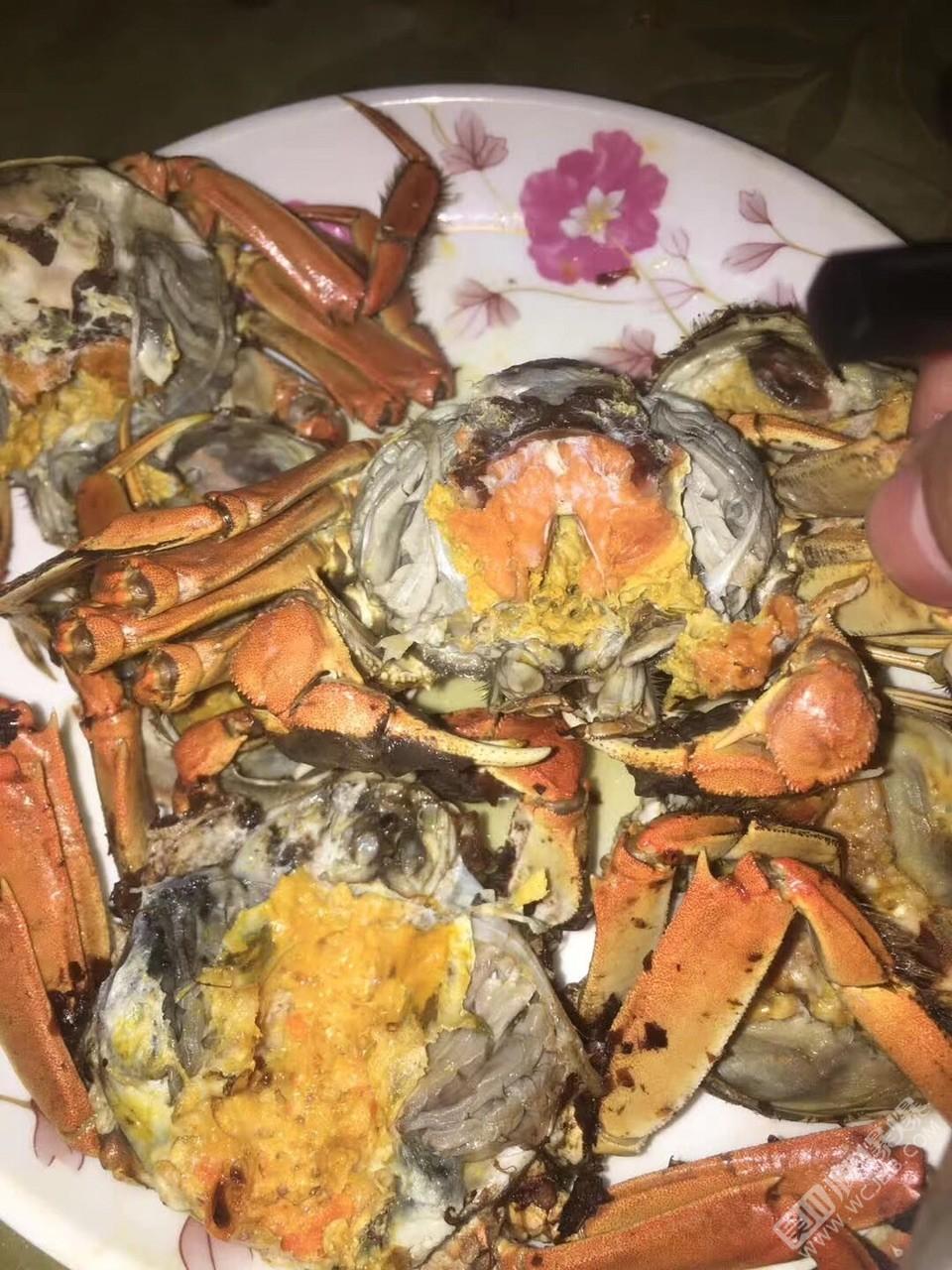 喜欢吃大闸蟹吗
